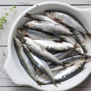 Whole Portuguese Sardines 1kg